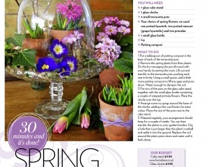 Spring-Under-Glass-sc-(Low-res-PDF)